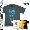 Stussy STUSSY tee T Can You Feel Tee cotton men gray white yellow black