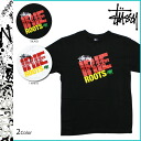 Stussy STUSSY short sleeve T shirt T-SHIRT TEE tee shirt tee short-sleeved tops men's 2013 new