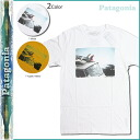 Point 2 x white yellow Patagonia patagonia short sleeve T shirt TEE slim fit Mens 51569 Mountain of Storms T-Shirt mens [genuine]