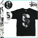 Stussy STUSSY short sleeve T shirt TEE mens