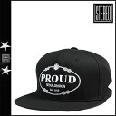Point double stereo STEREO snapback cap SNAPBACK CAP [black] CAP hat ぼうし men unisex [regular] 02P31Aug14