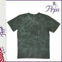 Point 2 x Pierre rupees PRPS short sleeve T shirt mens cut & sew 2014, new gray JACKSON [10 / 30 new in stock] [regular]