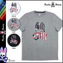 Psycho Bunny PSYCHO BUNNY short sleeve T shirt tee shirt mens cut & sew 2015 spring summer new 3 color BRIGHTON TEE [4 / 6 new in stock] [regular] ★ ★