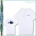 Patagonia patagonia T shirt short sleeve T shirt tee shirt mens fishing fishing outdoors 2015 spring summer new 38606 WHITE FITZ ROY TEE [4/16 new in stock] [regular] ★ ★