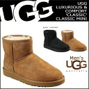 Point 2 x UGG Ugg Classic mini Sheepskin boots CLASSIC MINI Mouton Sheepskin mens 1002072 2 color [8 / 11 restock] [regular]