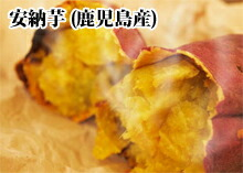 安納芋5kg(鹿児島産)