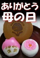母の日・和菓子ギフト