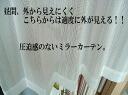 ' 거울 커튼에서 기간 한정 염가 가격에서 적당 한 투명 상태에서 꽃가루 캐치에서 너비 100cmx198cm * 1 개 * 】