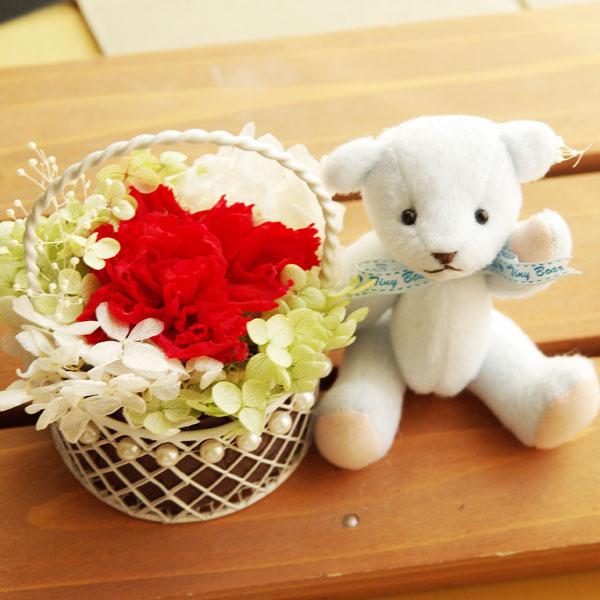 お花の贈り物 -solar- そらーる