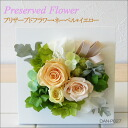 Arrangement to become the wall hangings! プリザーブドフラワー ネーベル * yellow DAN-P027fs3gm