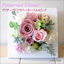 Preserved flower Dan-P028 arrangement and never * pink fs3gm