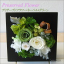 Arrangement to become the wall hangings! プリザーブドフラワー ネーベル * green DAN-P029fs3gm