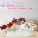 Flower プリザーブドフラワーアレンジメントエーデル DAN-P063fs3gm which does not become refined