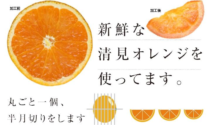 国産限定オレンジのドライフルーツ