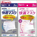 Kowa Fit & Moist Comfortable Mask ×5p≪Anti-Pollen/Virus Mask≫
