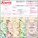 Kowa Three-dimensional Mask With Subtle Fragrance of Herb ×3p≪Anti-Pollen/Virus Mask≫