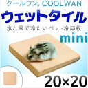The necessities feeling of a cold pet cooling tile mat hamster says only with cool one wet tile ● 20*20 ● water with legs, and let's ride out the refreshment chilly Deccan grass Deccan grass heat measures intense heat in this; is 《 patent registration pr