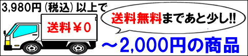 2000円以下のプチプライスアイテム