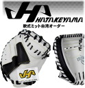Baseball equipment 2013 of catchers Mitt softball Taiwan order NTWO