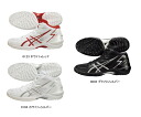 asics (Asics) 2014NEW basketball shoes GELHOOP V6 (gel hoop V6) TBF309