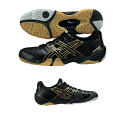 asics (Asics) 2014NEW handball shoes GEL-DOMAIN (gheld Maine)