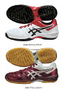 asics (Asics) 2014NEW handball shoes GELFLUSS (Guelf Ruth) THH535