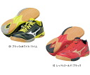 Mizuno (Mizuno) 2014NEW table tennis shoes WAVE DRIVE A2 (wave drive ace 2)