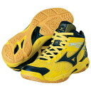 Mizuno (Mizuno) 2014 NEW volleyball shoes WAVE RAIJIN MD (wave rye gin MD) V1GA1425