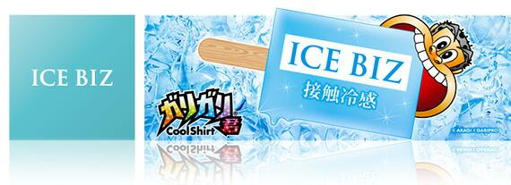 ICE BIZ