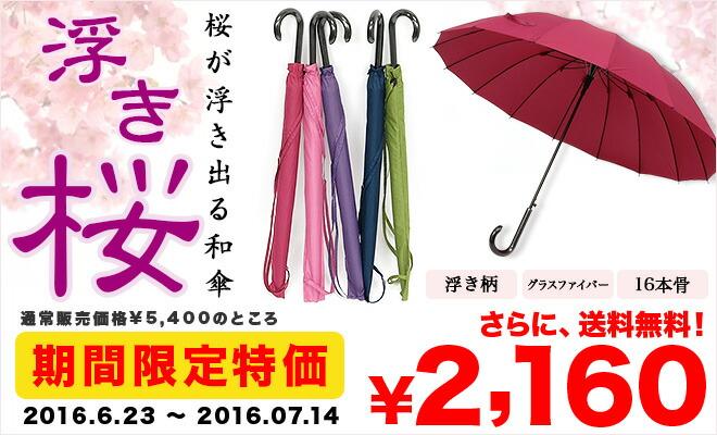 期間限定特価「浮き桜」