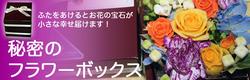 秘密のフラワーボックス リボンを解いて蓋をあけると 驚きのサプライズ!お花畑が広がります
