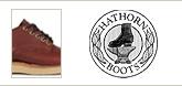 HATHORN �ϥ�����