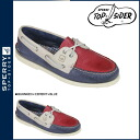 Point 2 x Sperry Top cider SPERRY TOPSIDER deck shoes [red x cement x dark blue] 0271510 Authentic Original Burnished Boat Shoe M wise leather men's [regular]