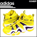 8 8 point double Adidas adidas CRAZY sneakers G24829 crazy leather men Kobe Bryant yellow [3/7 Shinnyu load] [regular]★★