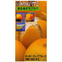 A Citrus natsudaidai scissors parer is 02P22Nov13 easily