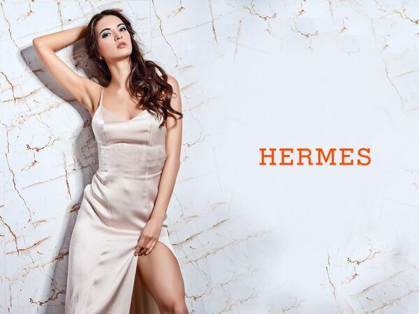 HERMES (エルメス)/ブランド説明