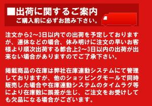 info130110.jpg