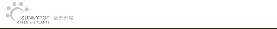 サニーポップ:多肉植物、観葉植物、エアプランツ、ガーデニング雑貨等の販売