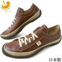 ■ スピングルムーブ SPM-110 the size of your contact / SPINGLE MOVE BROWN BLACK IVORY Womens mens sneakers スピングルムーヴ / / fs2gm