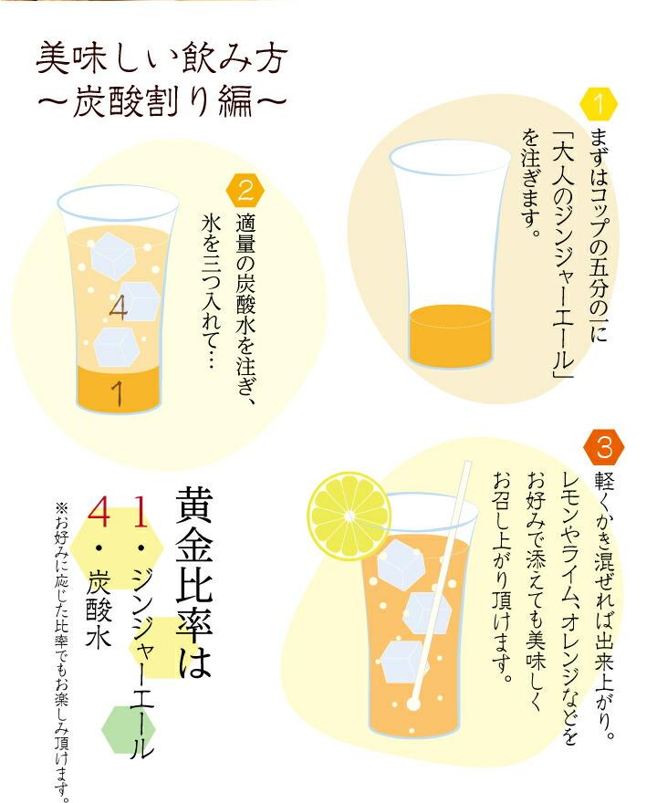 ジンジャーエール美味しい飲み方〜炭酸割り編〜