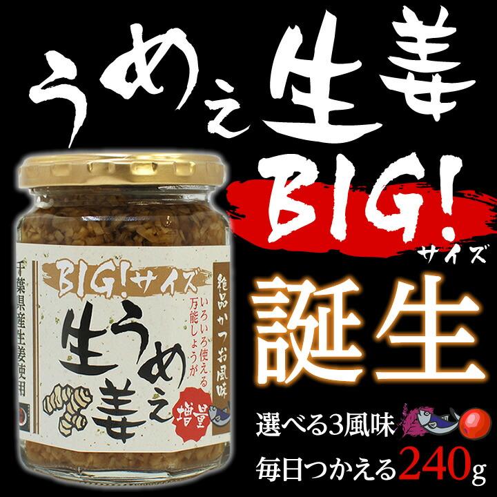「うめぇ生姜BIG」