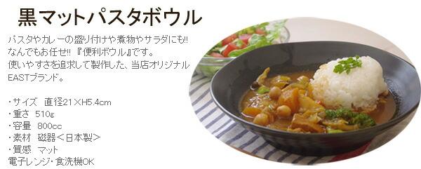 パスタ皿 カレー皿 アウトレット