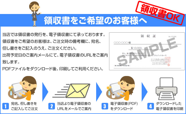 bnp-receipt-info.jpg