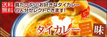 タイカレー三昧!6人分具タップリ!3500円!送料無料選べるタイカレーセット