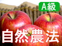 Houzumi's natural farming apples Fuji [10 kg].