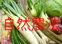 ★ 11 / 25-11 / 29 ships: ★ want vegetables set ( natural / organic cultivation and special cultivation ) organic vegetables ★ some regional shipping excluded