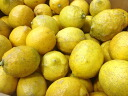 Organic spring Mr. lemons (domestic) 1 kg * B grade products ( skin sores and blotches are )
