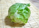 One organic or natural agricultural methods lettuce