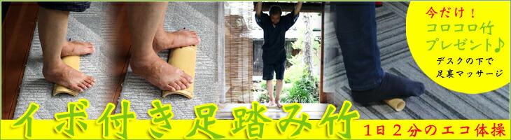 1日2分のエコ体操 イボ付き足踏み竹