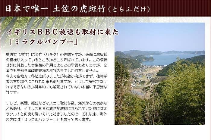 日本で唯一、土佐の虎斑竹(とらふだけ)